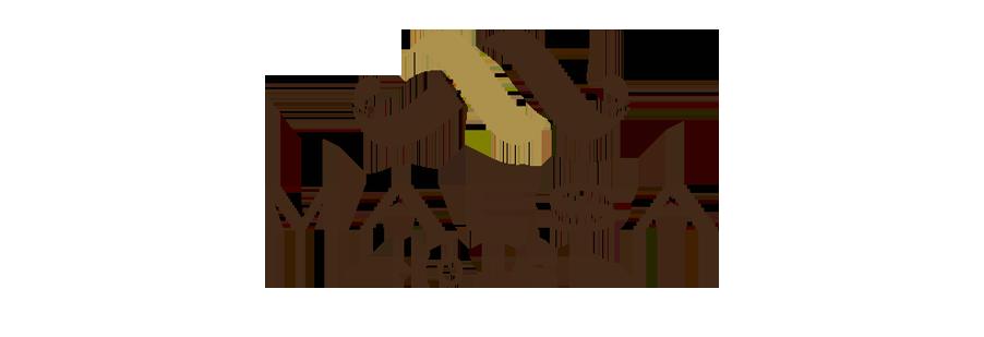 MAESA HOTEL